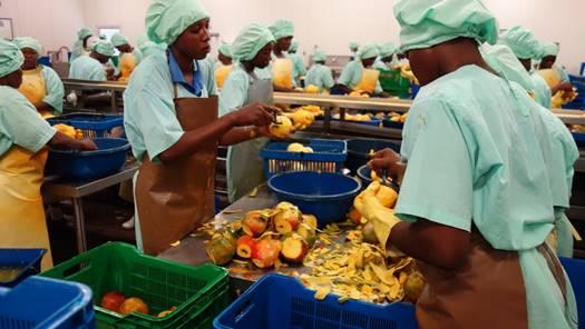 Project Eplucheur – Anders met mango