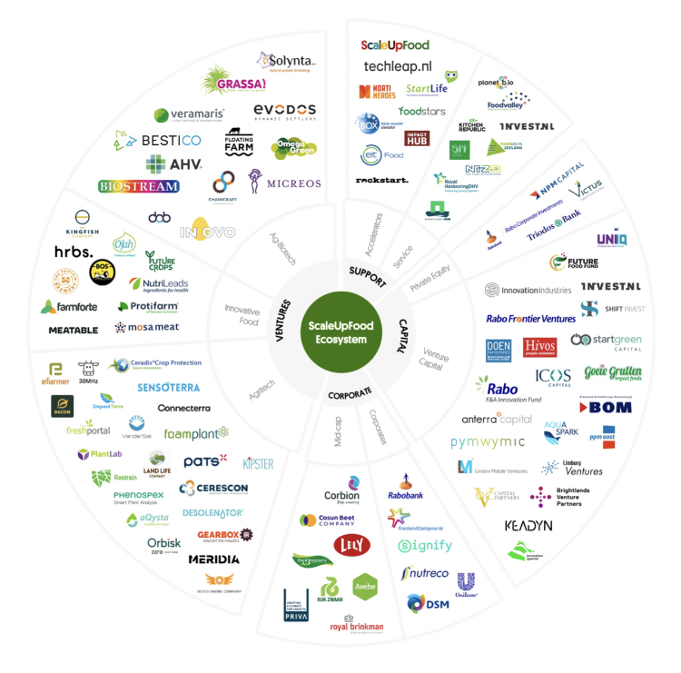 Scale Up Food System